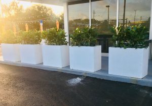 Custom Modern Concrete Planters set in landscaping